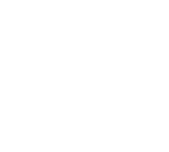 Attica Stores